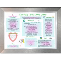 Baby Day You Were Born - Premium Pewter Silver Frame - Baby